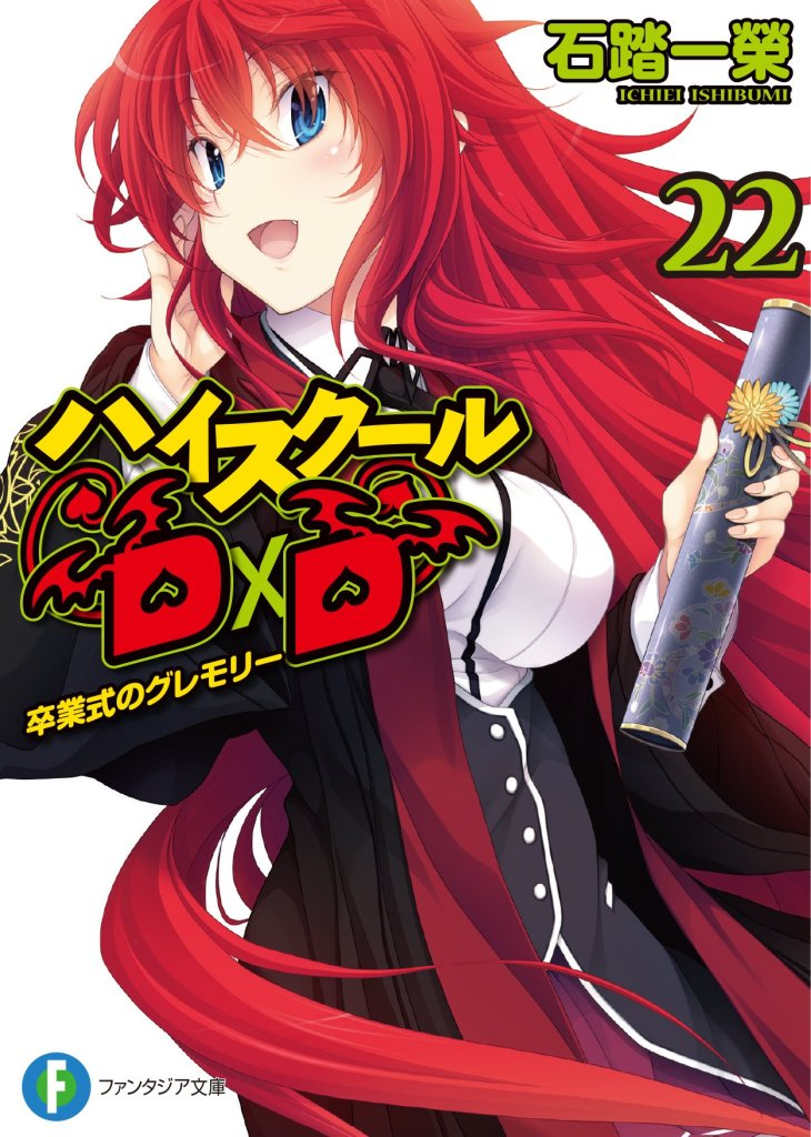 DxD_LN_22_cover
